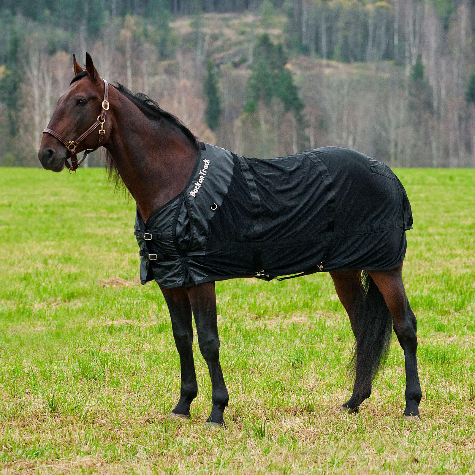 Back on Track Mesh Blanket ...