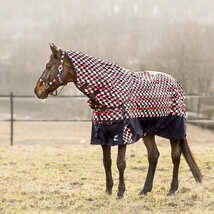 Online Shop For Horse Tack Riding Apparel Horse Supplies And