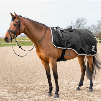 Horse Blankets, Sheets & Coolers, Fly Sheets | Horze Equestrian