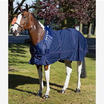 horse tack and supplies horse riding gear and equipment horze