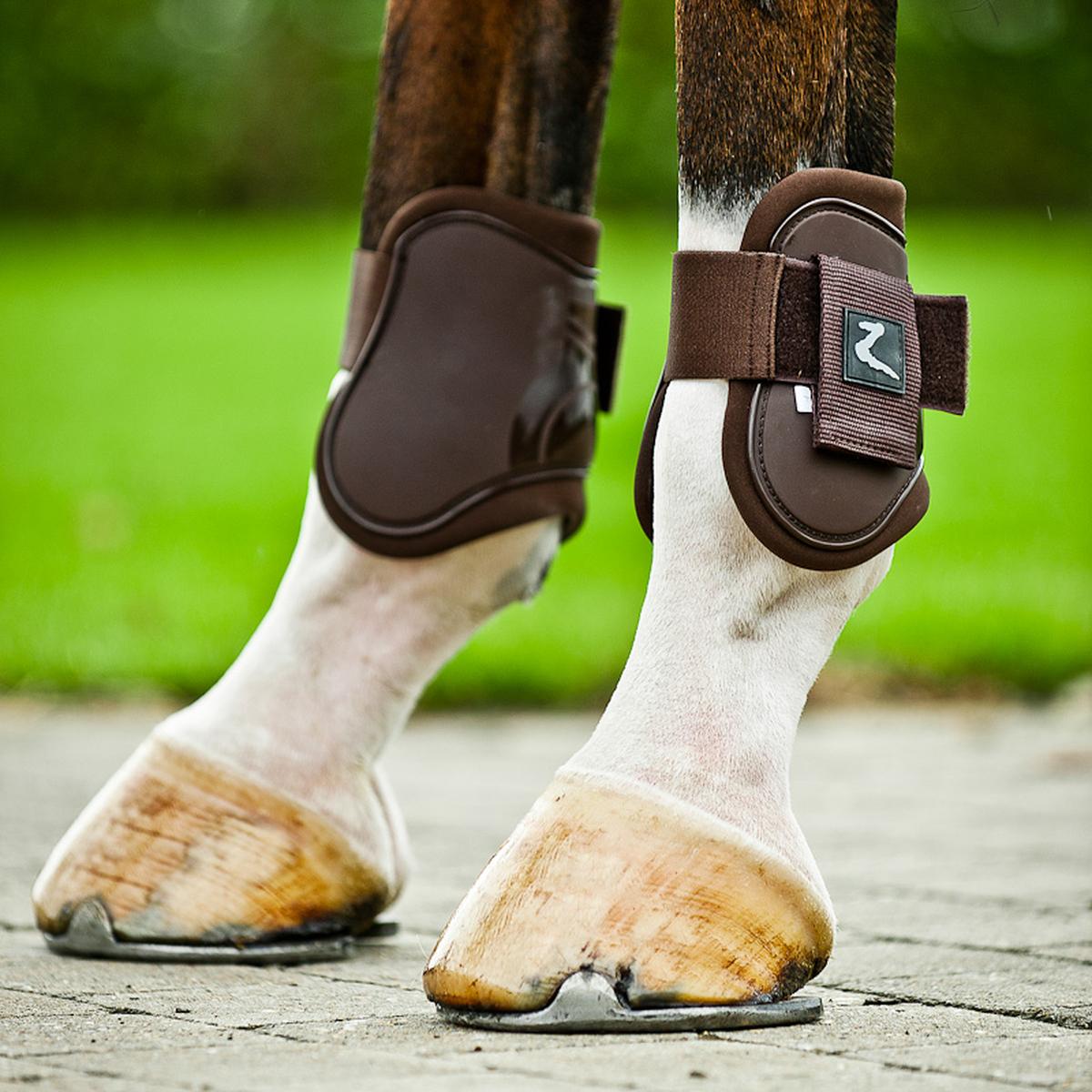 Winter Horse Blankets >> Horze Advanced ProTec Boot Set | Horze