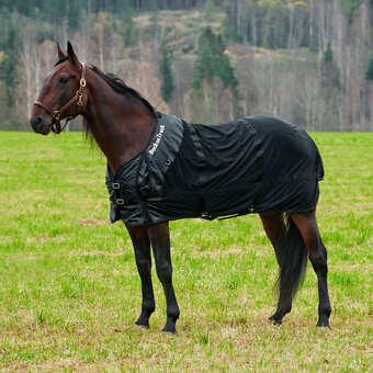 Back On Track Theutic Mesh Horse Blanket